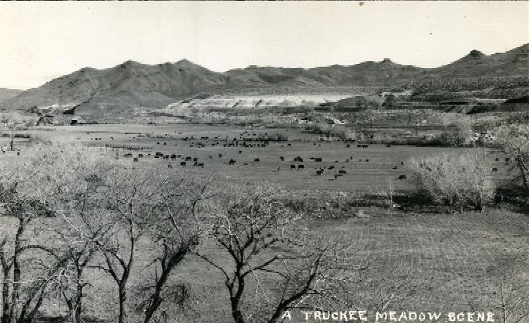 A Scene of the Early Truckee Meadows